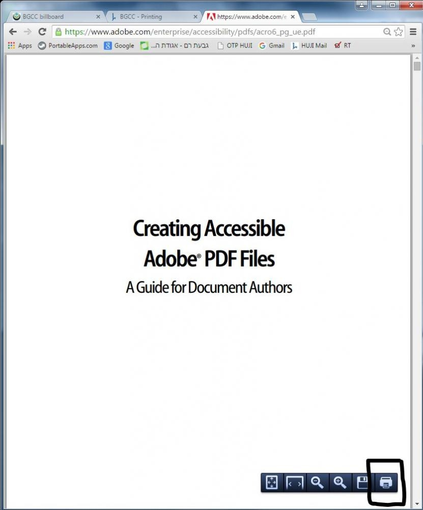 PDF in browser